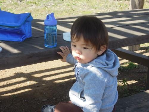 Coyote Hills-picnic